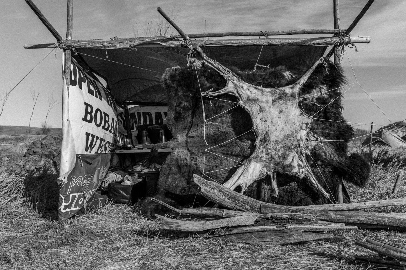 Buffalo and Deer Hide Camp