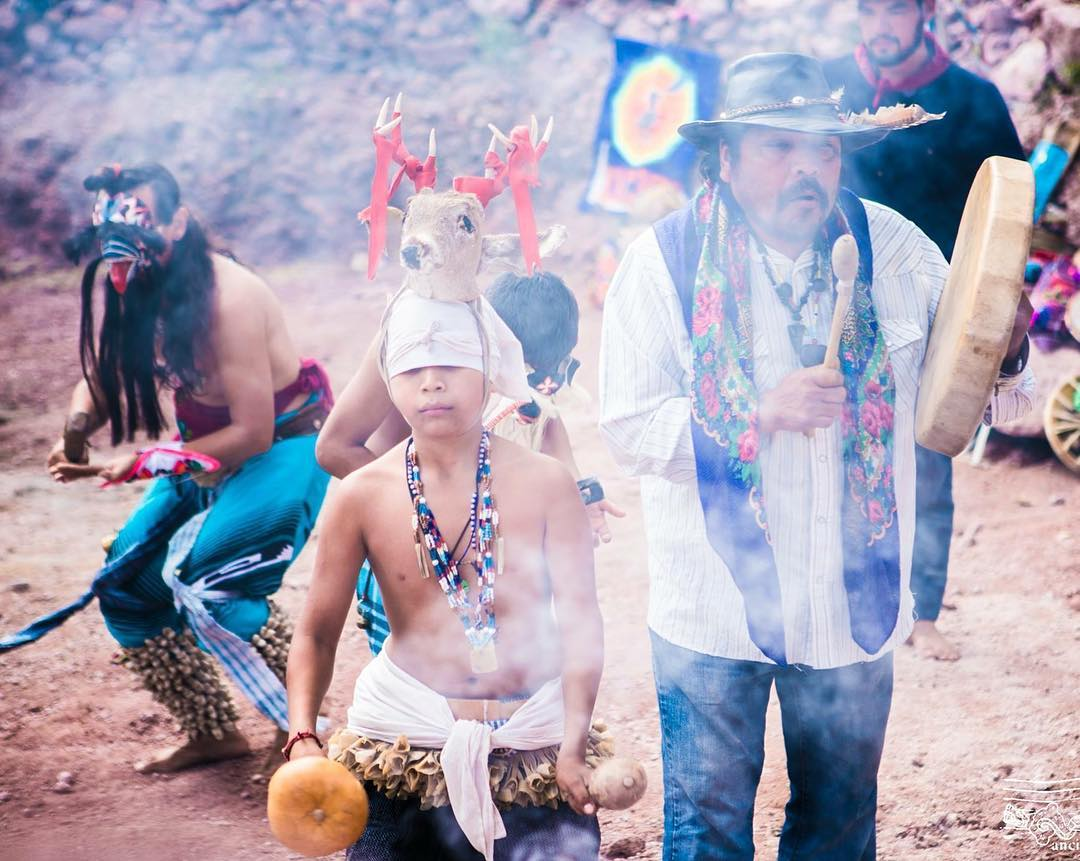 Yaqui Mexico Deer Dance Flower World Indigenous