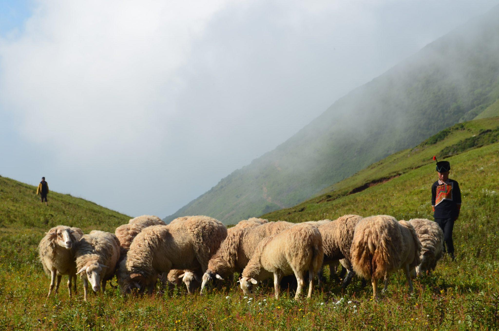 Cool Mountains Yi Prefecture China